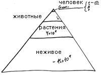 2009-09-18__rb-shamati-013-inyan-rimon_lesson_bb.jpg