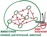 2010-11-18_rav_zohar-la-am-hakdama_lesson_bb_n5