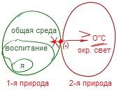 2010-11-24_rav_bs-guf-ve-nefesh_lesson_bb_n2_pic03