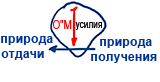 2010-12-10_rav_kitvey-rb-dargot-sulam-545-yegia-ve-mezia_lesson_03