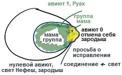 2011-05-13_rav_kitvey-rb-1988-16-kdusha-nivnet_lesson_pic12