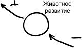 2011-09-16_rav_lesson_congress_n1_02