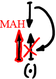 2011-11-15_rav_bs-aravut_lesson_n3_05