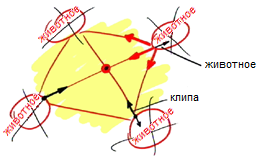 2012-04-02_rav_bs-tes-07_lesson_n15_pic01