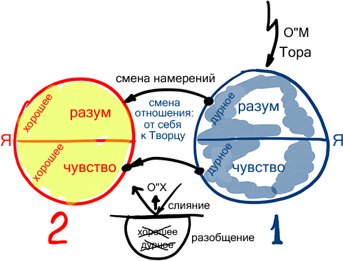 2013-03-21_rav_bs-akdama-zohar_lesson_n18_01
