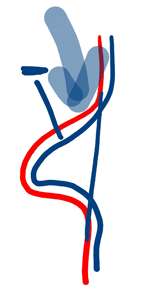 2013-07-12_rav_lesson_congress_n1_02