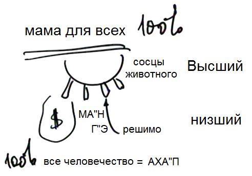 2013-10-06_av_bs-tes-09_lesson_pic23