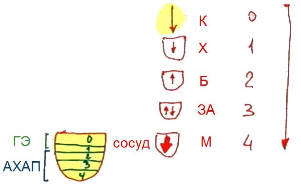 2014-11-21_heb_rav_lesson_congress_n4_pic05